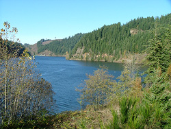 View from start of Best Dam Run & Walk